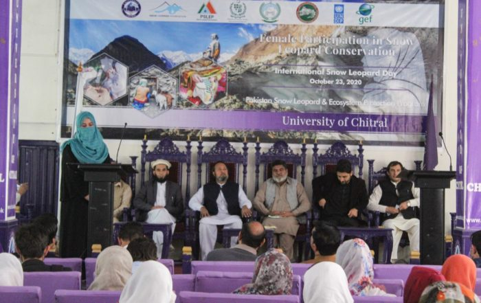 Snow leopard conservation in chitral