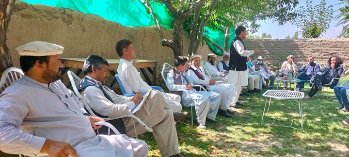 Action sought against govt employees for political statements